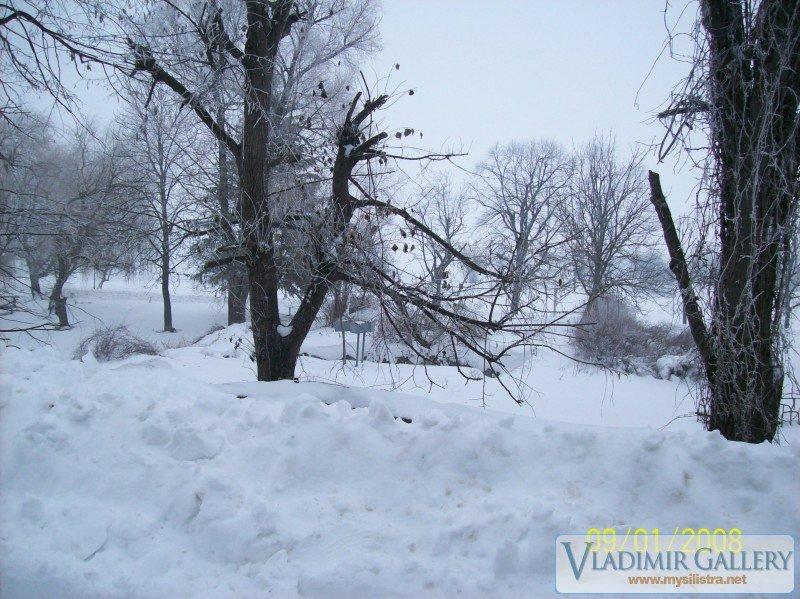 Зима в движение