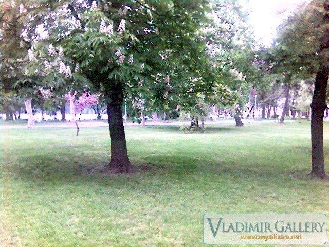 Дунавска градина 17