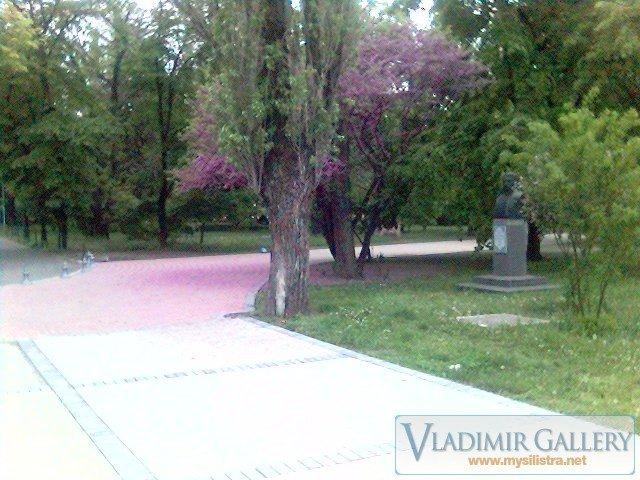 Дунавска градина 16