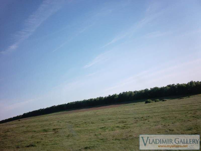 Голяма поляна