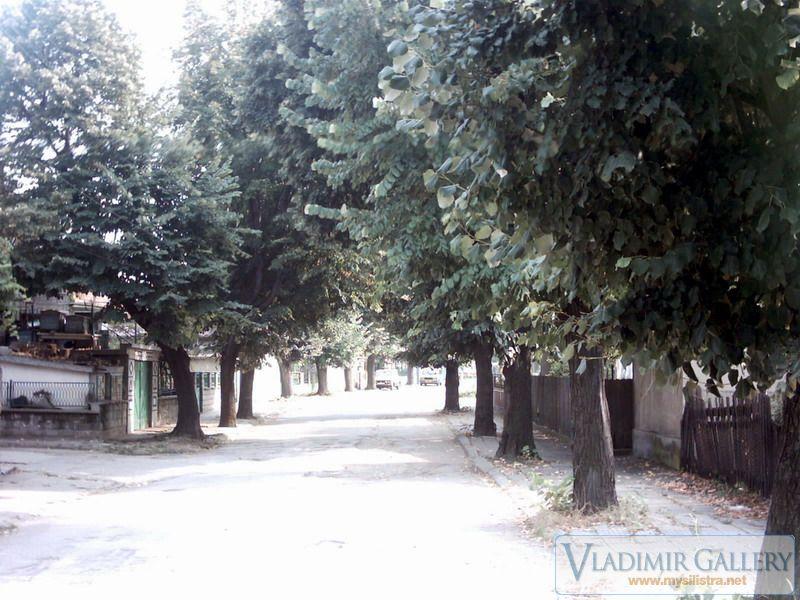 Улица Волната