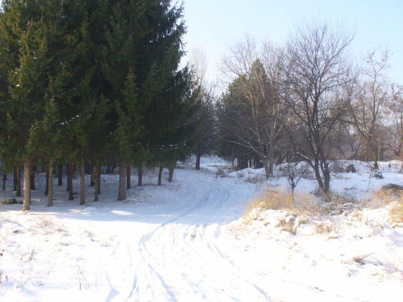 Пътека край Силистра