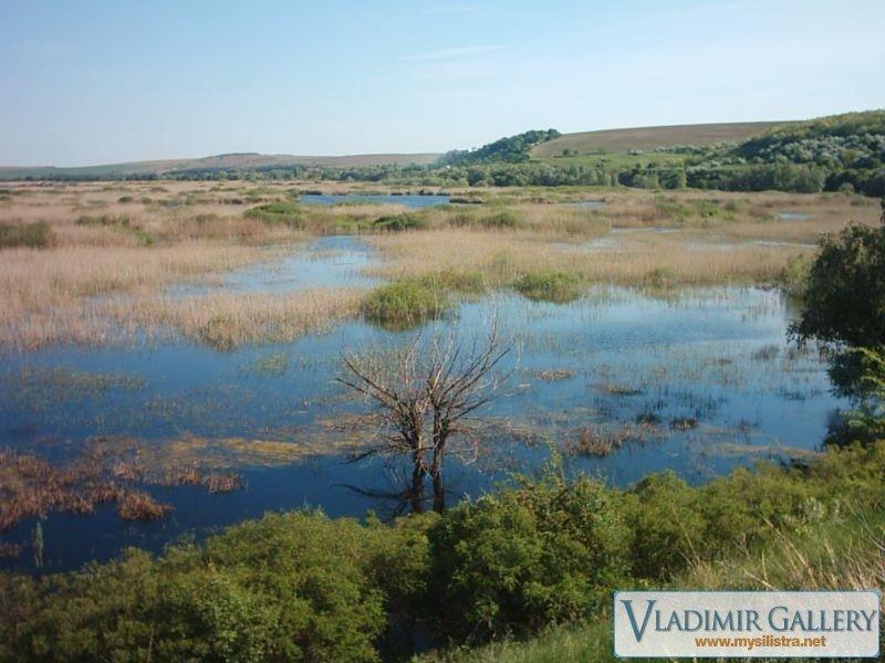 Резервата Сребърна