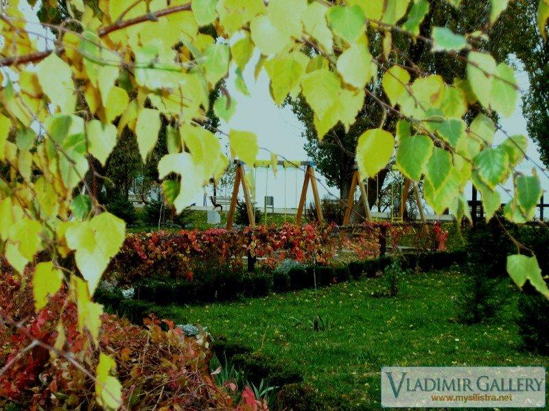 Дунавска градина