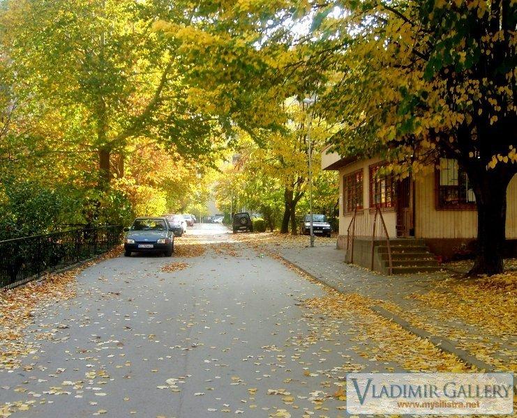 Улица в Силистра