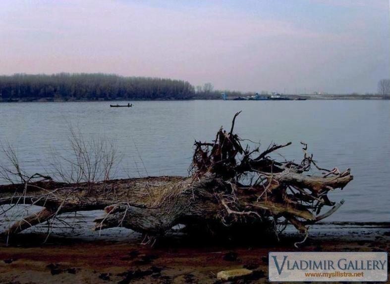 Дунавски крокодил