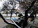 Зима в Дунавския парк