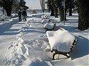 Пейки в Дунавски парк
