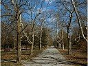 Пътека в Дунавски парк