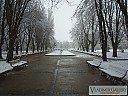 Дунавската градина през зимата