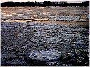 Река Дунав под снежна покривка