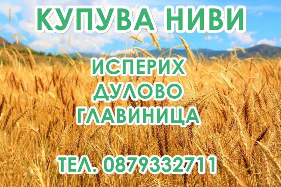Купува земеделска земя Дулово | Исперих | Главиница